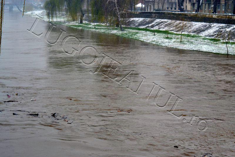 autoritati alerta timisul s-a umflat inundatii pericol bega balint bodo manastiur lugojeanul 2013 (2)