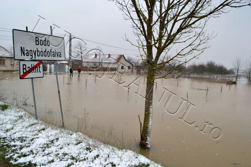 bodo inundatii 15 martie apa revarsare bega rau lugojeanul 2013 (1)