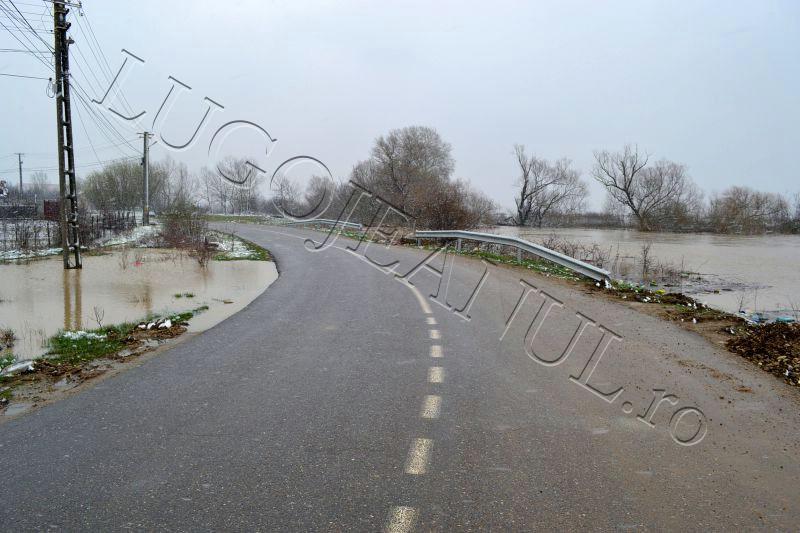 bodo inundatii 15 martie apa revarsare bega rau lugojeanul 2013 (8)
