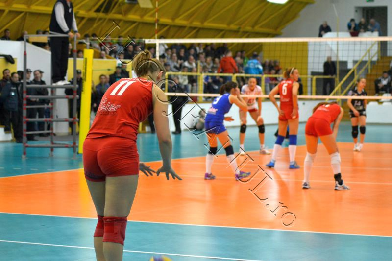 volei, csm lugoj, cs dinamo romprest 2-3 divizia a1 playoff fotografii lugojeanul 2013 (8)