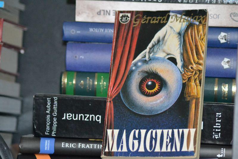 cartea de vineri gerar majax magicienii recomandare lugojeanul 2013