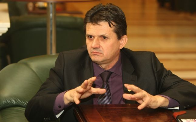 ioan iovescu senator de lugoj parlament constitutia lugojeanul 2013