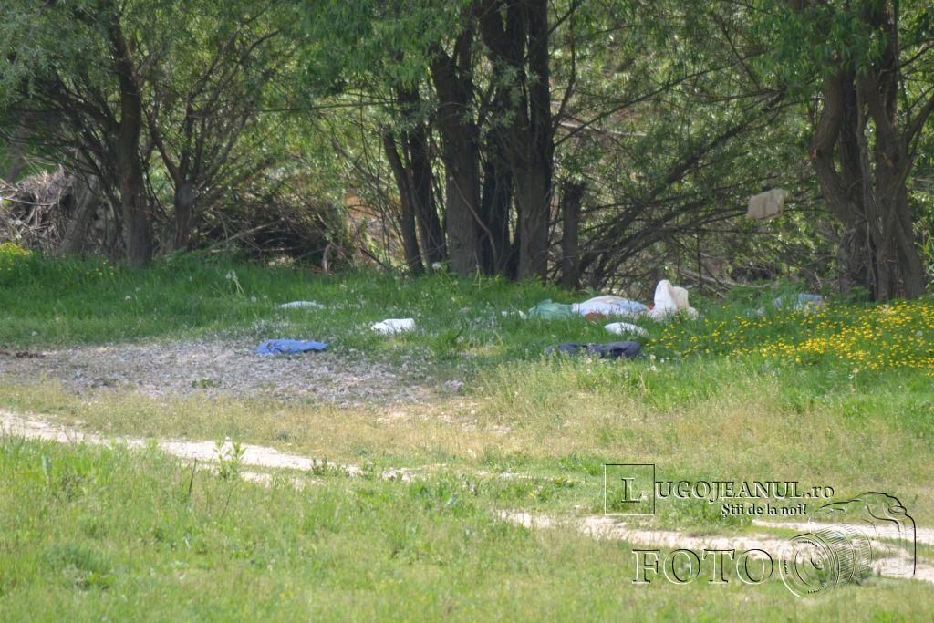 gunoaie-moloz-aruncate-la-pubela-salprest-de-1-mai-lugojeanul-2013-1