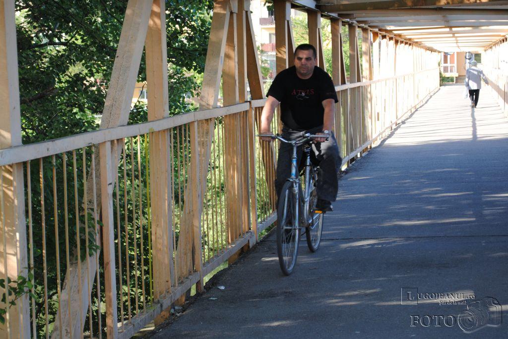 lugojul-pedaleaza-pe-leucuta-foto-galerie-lugojeanul-2013-5