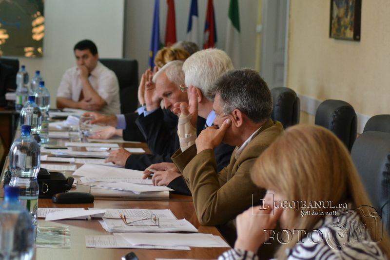 sedinta ordinara a consiliului local lugoj 23 mai 2013 foto lugojeanul (6)