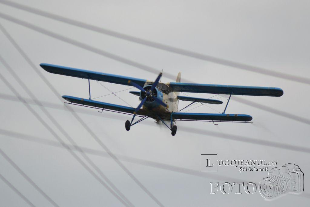 avion-dezinsectie-aerochimica-lugoj-partea-a-doua-26-iunie-2013-foto-galerie-superfoto-lugojeanul-1