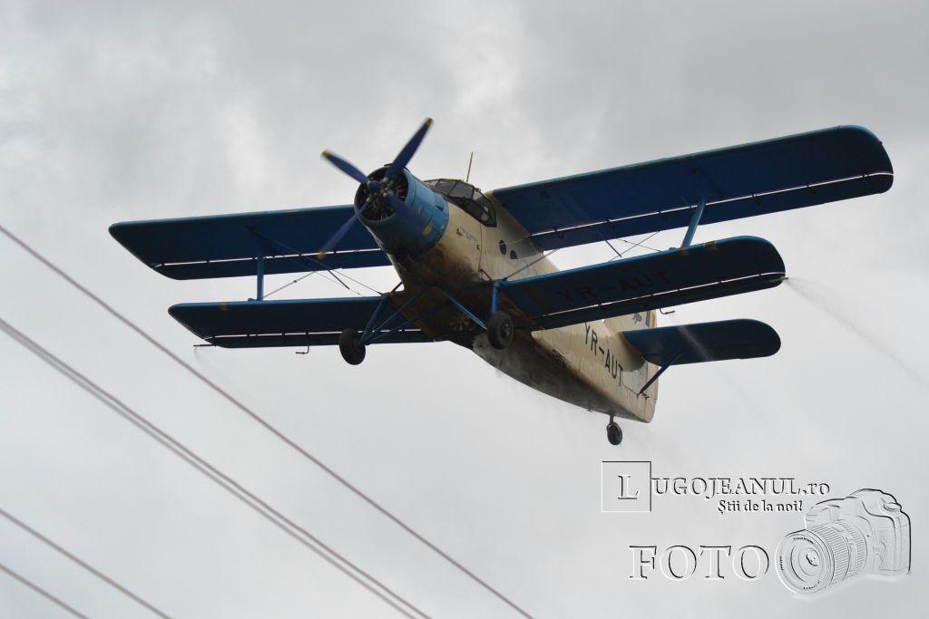 avion-dezinsectie-aerochimica-lugoj-partea-a-doua-26-iunie-2013-foto-galerie-superfoto-lugojeanul-4