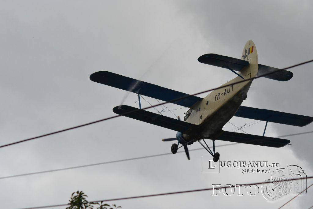 avion-dezinsectie-aerochimica-lugoj-partea-a-doua-26-iunie-2013-foto-galerie-superfoto-lugojeanul-6