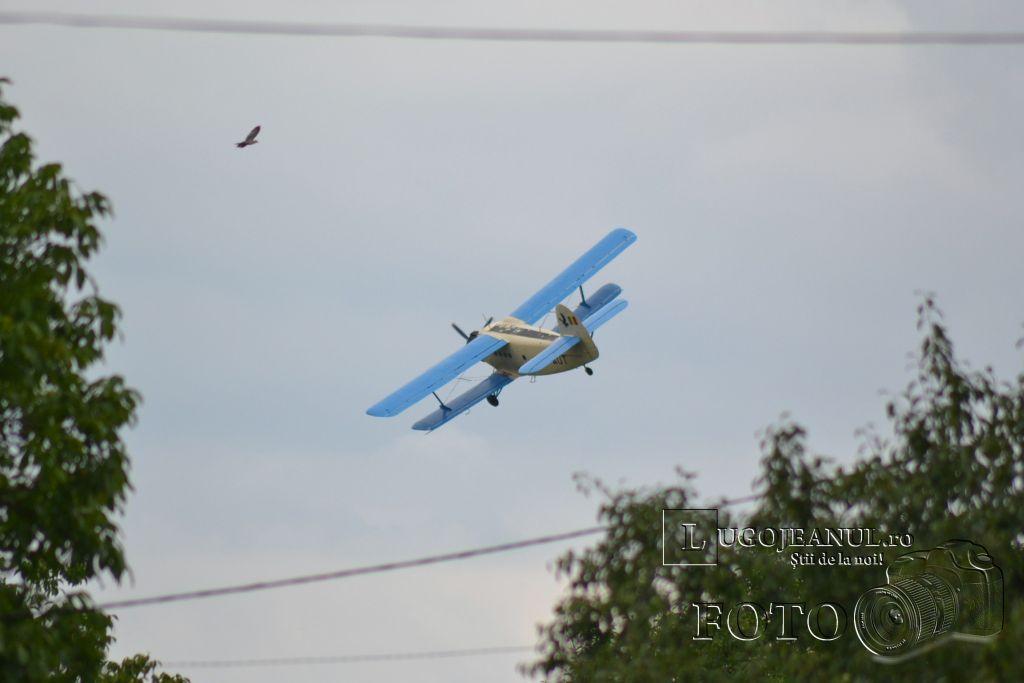avion-dezinsectie-aerochimica-lugoj-partea-a-doua-26-iunie-2013-foto-galerie-superfoto-lugojeanul-8