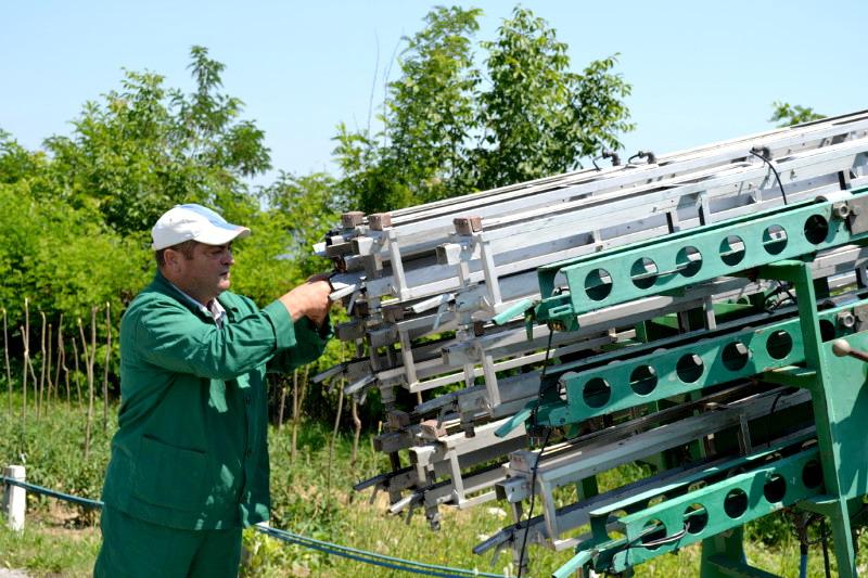 rachete antigrindina la lugoj conferinta de presa saptamanala acum cativa ani boldea oameni culturi lanuri de grau agricultori lugojeanul 2013