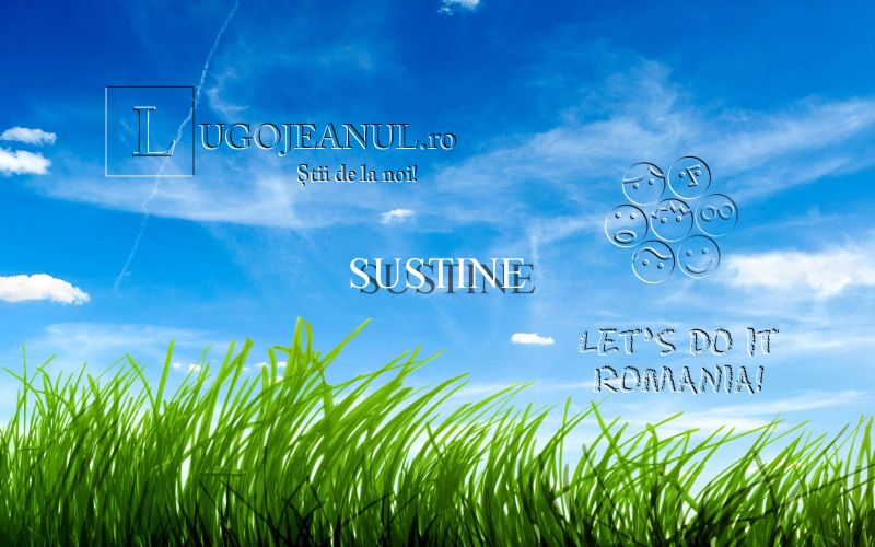 blue_sky_green_grass-wide