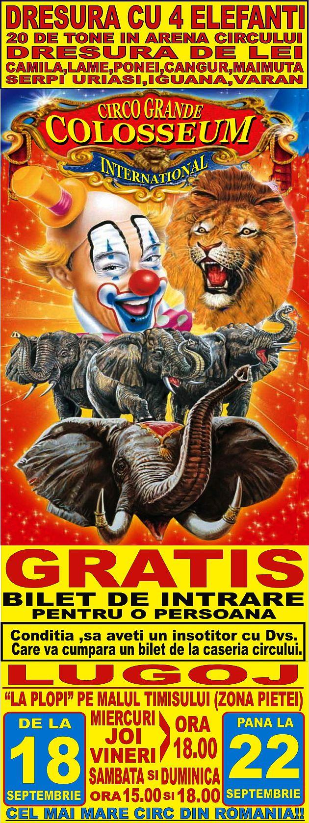 cel-mai-mare-circ-din-romania-lugoj