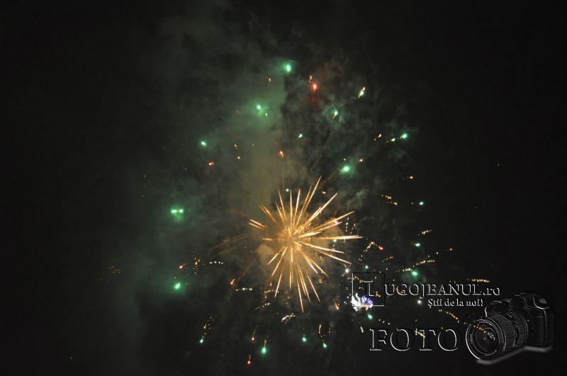 foc de artificii 50 de ani de lugojana 2013 lugojeanul foto (3)