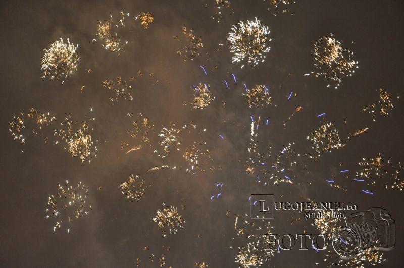 foc de artificii 50 de ani de lugojana 2013 lugojeanul foto (4)