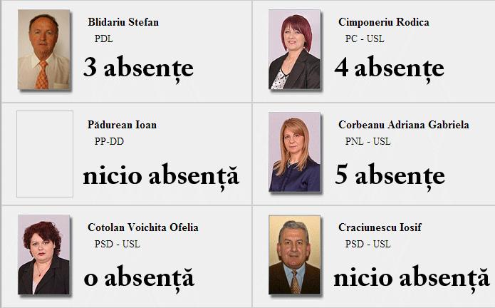 consilieri-locali-lugoj-2