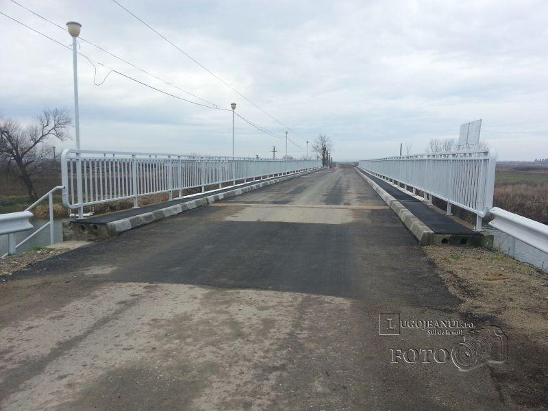 pod reabilitat costeiu foto galerie 20 ianuarie 2014 lugojeanul (3)