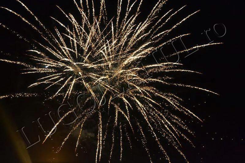 revelion 2014 lugoj foc de artificii lugojeanul foto (1)