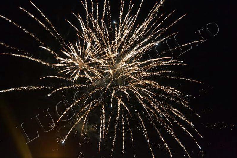 revelion 2014 lugoj foc de artificii lugojeanul foto (8)