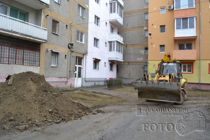 parcari micro 4 probleme gradini cartier lugojeni foto 4 martie 2014 lugojeanul (2)