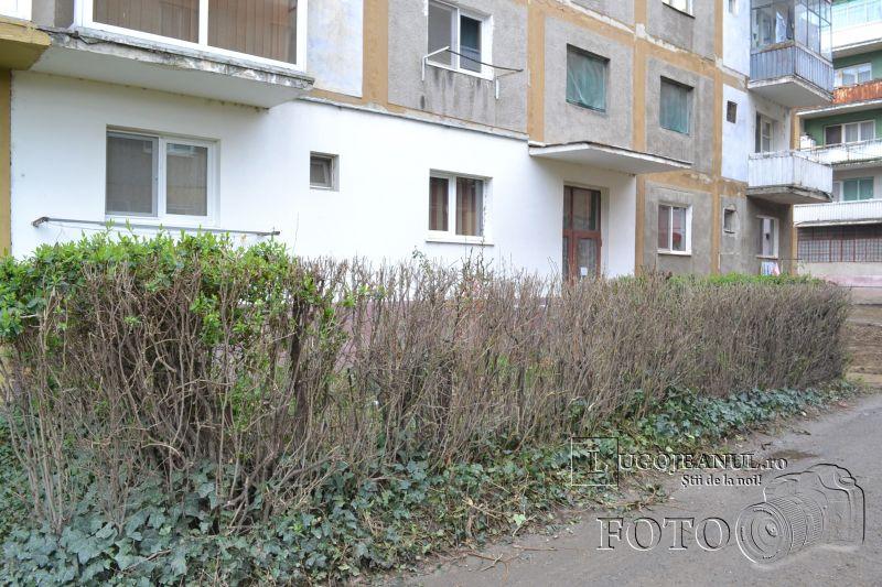parcari micro 4 probleme gradini cartier lugojeni foto 4 martie 2014 lugojeanul (8)
