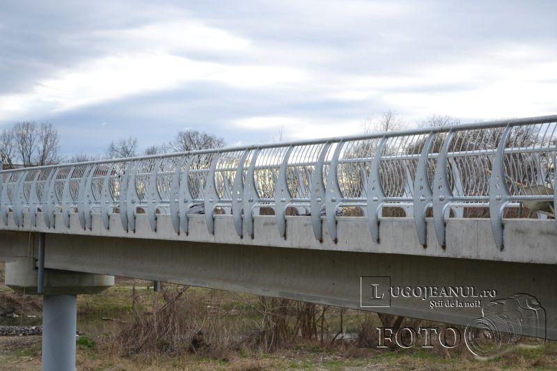 podul lui boldea balustrade futuriste foto lugojeanul 2014 (6)