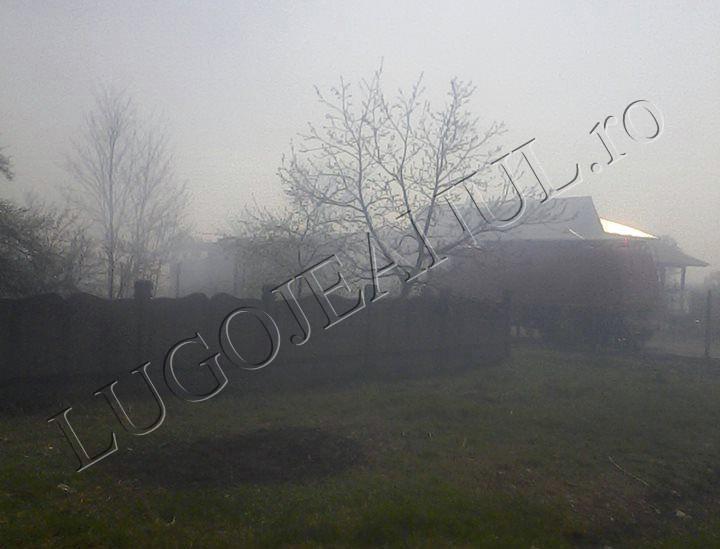 incendiu jena 3 aprilei 2014 foto casa anexa 11 copii familie (3)