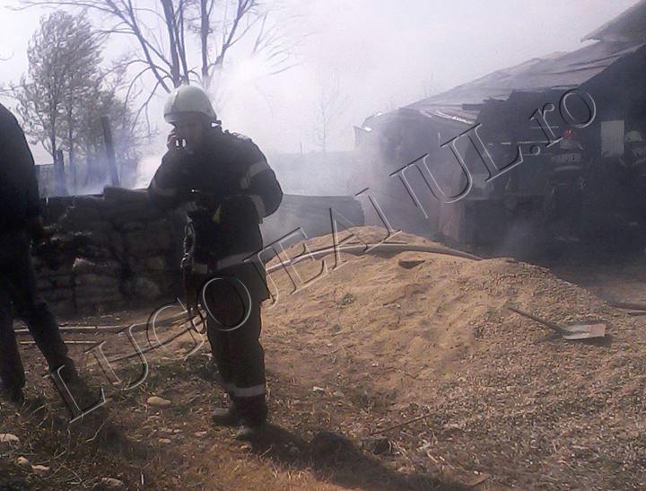incendiu jena 3 aprilei 2014 foto casa anexa 11 copii familie (5)