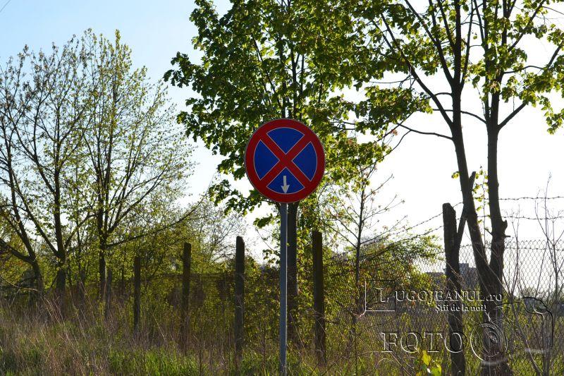 semnele pentru nimic din lugoj (5)