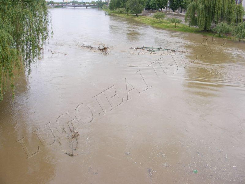crengi fantana lui boldea lugoj timis rau umflat inundatii alerta foto galerie lugojeanul 5 mai 2014 (1)