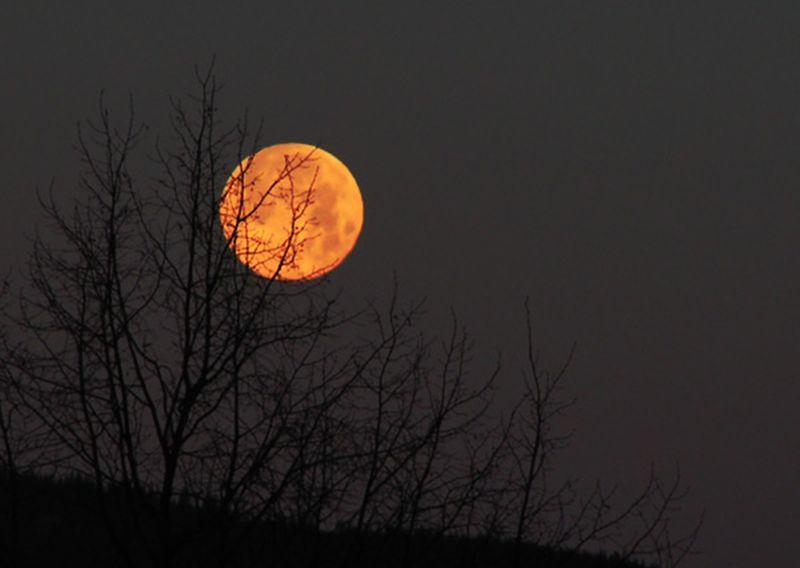 luna de miere superluna lugoj 2014 iunie 13 full