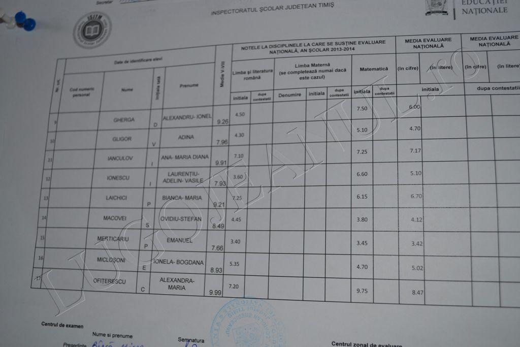 rezultate evaluare nationala lugoj 2014 brediceanu hasdeu note capacitate timis (9)