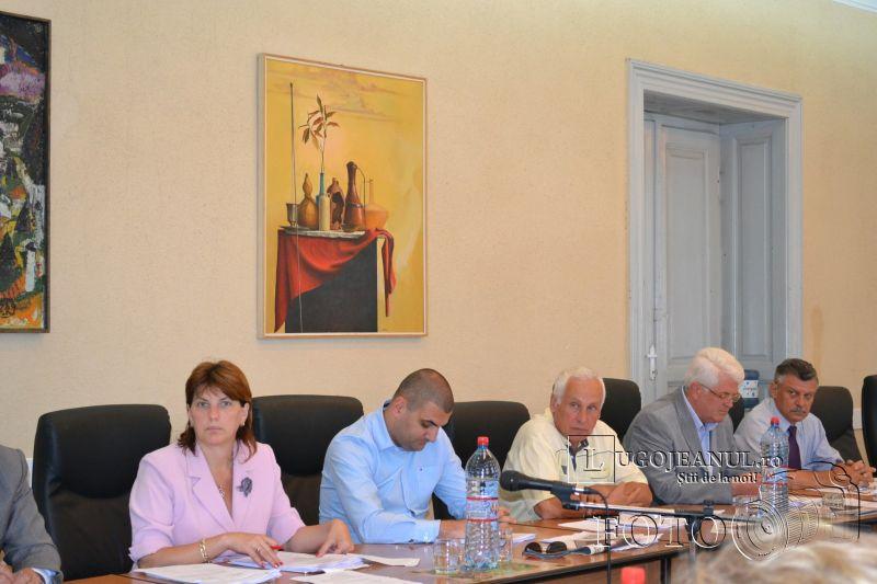 sedinta extraordinara consiliul local lugoj 5 iunie 2014 flacara violet (3)