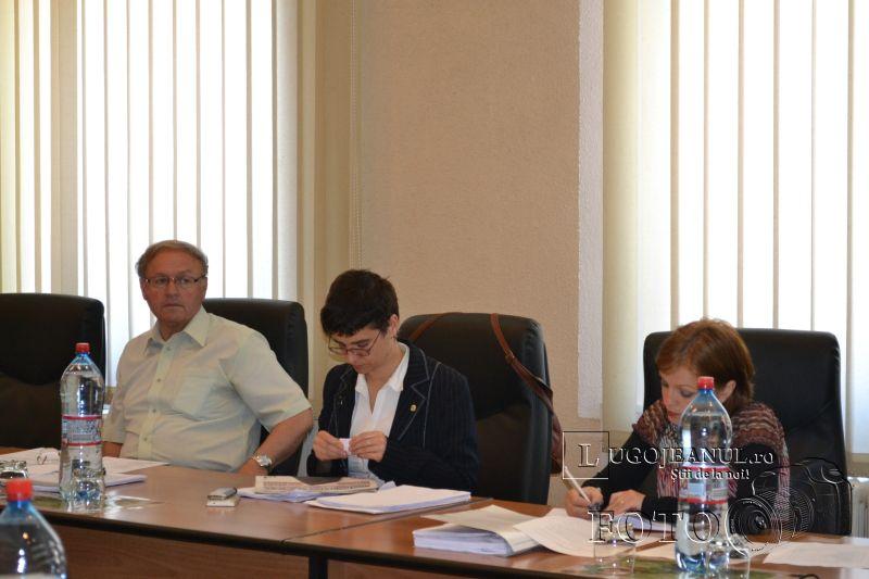 sedinta extraordinara consiliul local lugoj 5 iunie 2014 flacara violet (4)