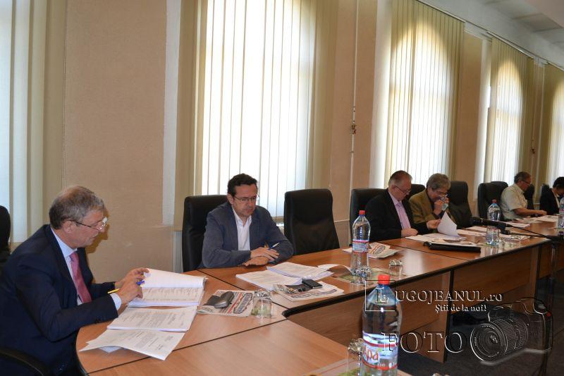 sedinta extraordinara consiliul local lugoj 5 iunie 2014 flacara violet (5)