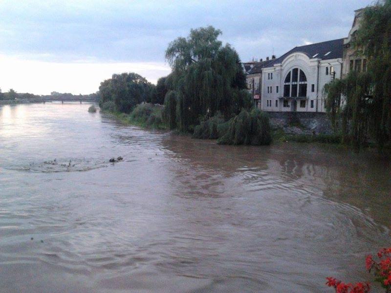 alerta lugoj raul timis apa crescut cod hidrologic galben inundatii mal poduri fier bieton fantana arteziana lugojeanul 2014 (3)