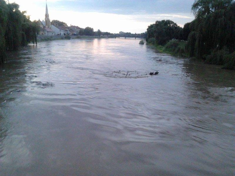 alerta lugoj raul timis apa crescut cod hidrologic galben inundatii mal poduri fier bieton fantana arteziana lugojeanul 2014 (4)