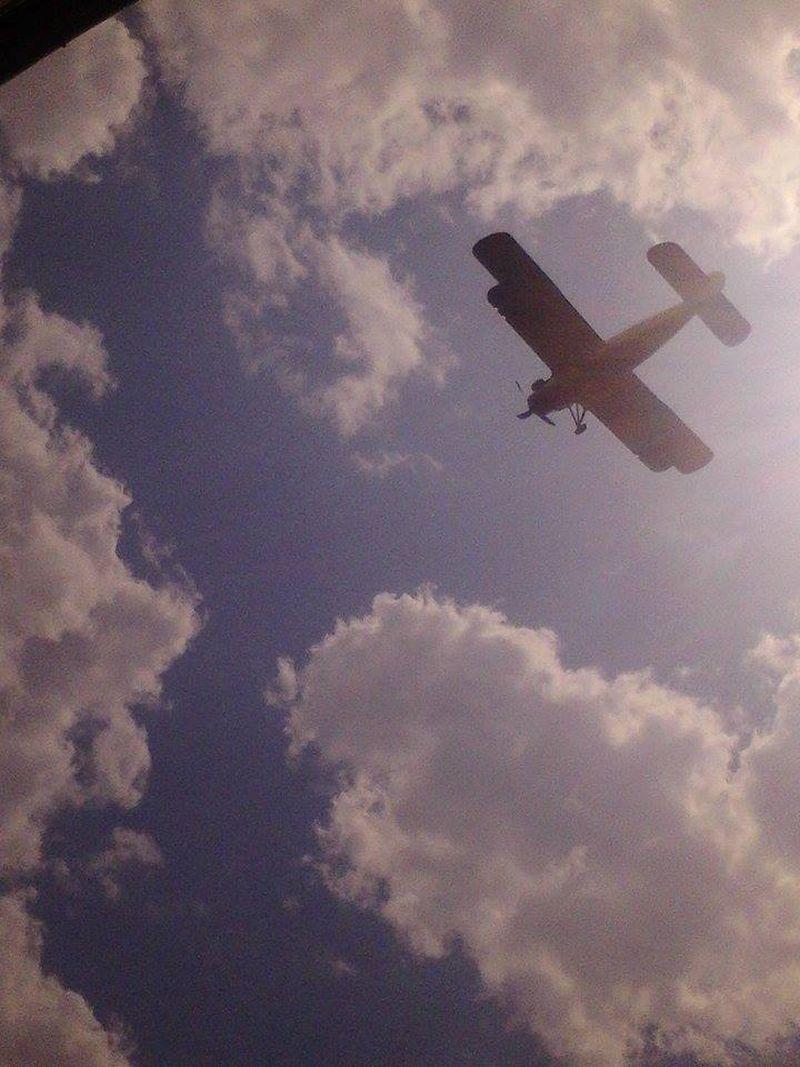 avion lugoj dezinsectie aerochimica 9 iulie 2014 foto video lugojeanul (1)