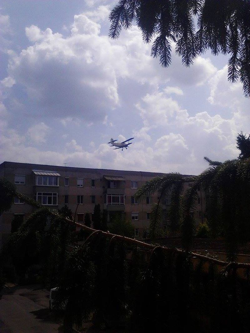 avion lugoj dezinsectie aerochimica 9 iulie 2014 foto video lugojeanul (3)