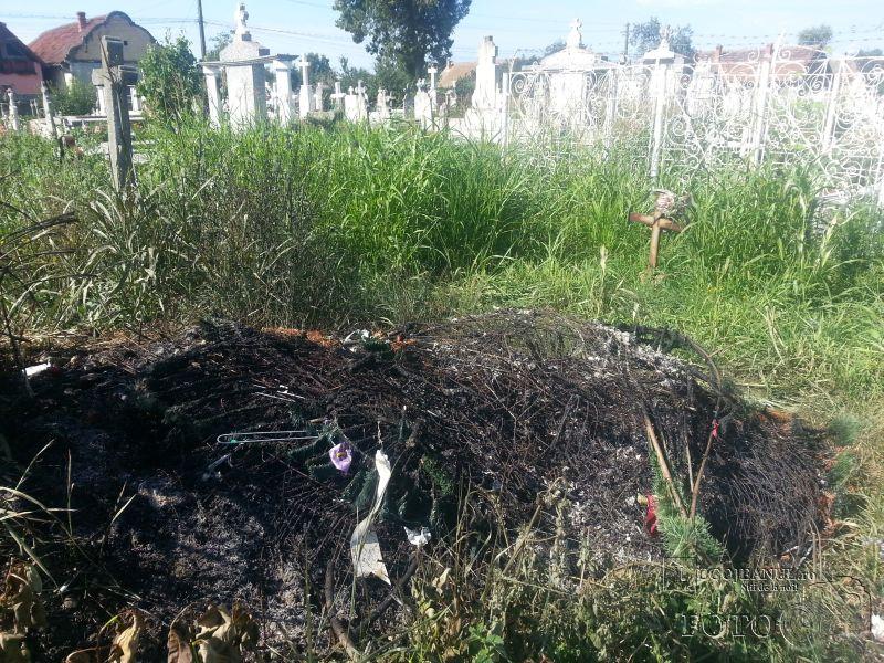 coroane incendiate si sticle de bere in cimitir costeiu petrecere in toiul noptii foto galerie lugojeanul 2014 (2)