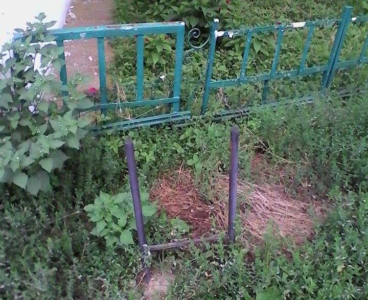 cosuri de gunoi disparute din lugoj motivul revopsire politia locala primaria lugoj salprest curatenie salubrizare lugojeanul 2014