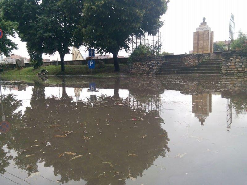 inundatii corneliu coposu lugoj 12 iulie 2014 ploi curti magazine strazi inundate municipiul lugoj furtuna precipitatii (1)