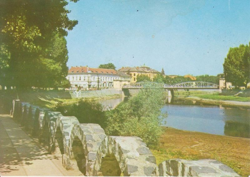 lugoj imagini vechi oras timis municipiu anii 80 90 70 primarie prefectura comunism piete ana lugojana strand podul de fier centru (16)