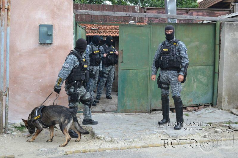 mascatii lugoj perchezitie trafic tigari tutun piata romi foto galerie politia timis lugojeanul 2014 (2)