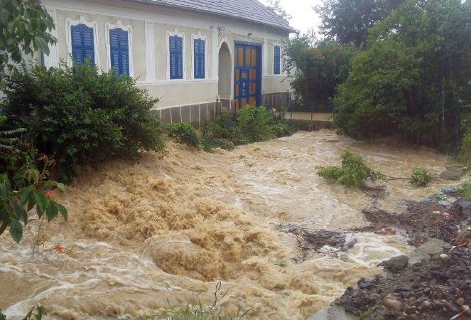 potopul